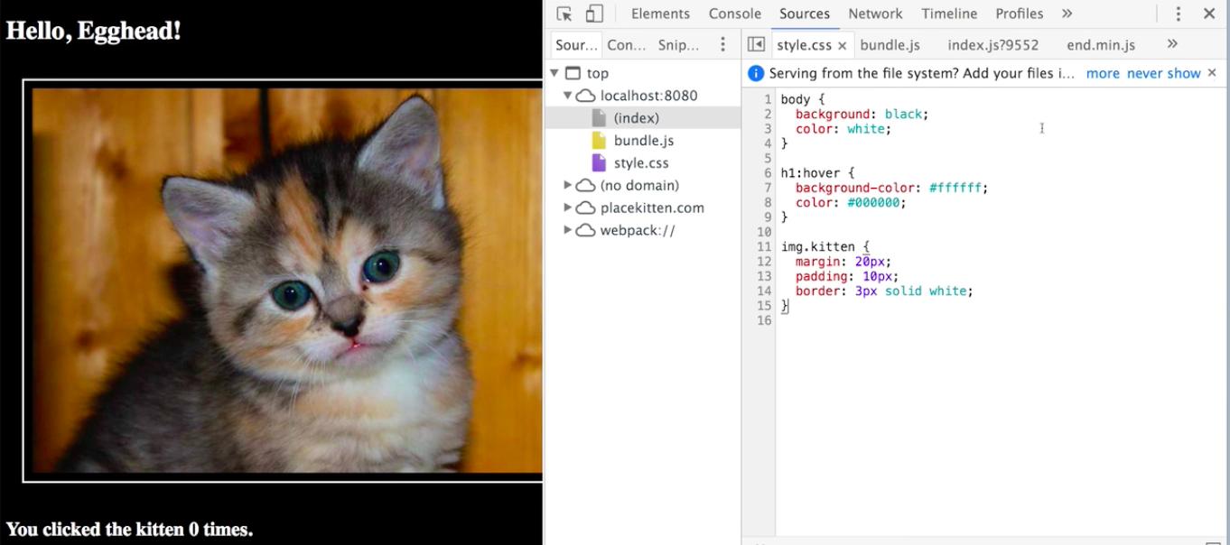 Kitten Margin, Padding, And Border